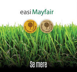 Easigrass Mayfair