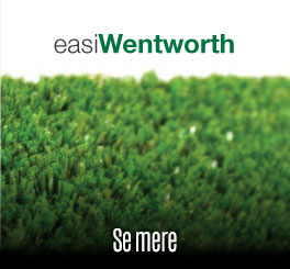Easigrass Wentworth